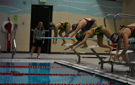 Splish Splash! The Girls Swim Crew is Back